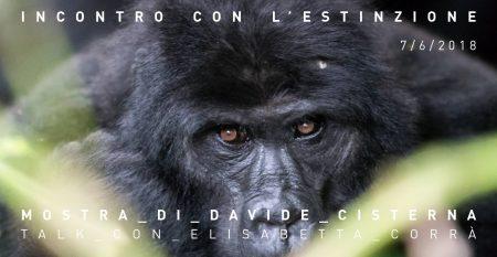 Gli ultimi gorilla di montagna dell'Uganda