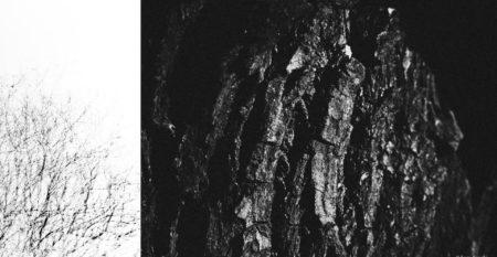 Ph. Luca Airaghi_mostra Paesaggi di silenzi